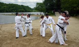 Burke Karate Lessons: Four Weeks of Unlimited Martial Arts Classes at Burke Karate Lessons (48% Off)