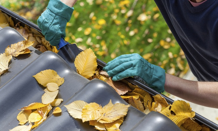 Gutter Cleaning or Power Washing from Pro Clean Janitorial & Building Maintenance (50% Off)