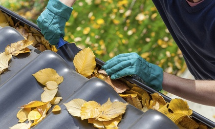 Gutter Cleaning for One-Story House Up to 2,500 or 4,000 Square Feet from The Seamless Pros LLC (60% Off)