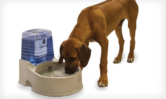 K&H Pet Products CleanFlow Pet Bowls: K&H Pet Products CleanFlow Bowl in Small, Medium, or Large (Up to 62% Off). Free Shipping.