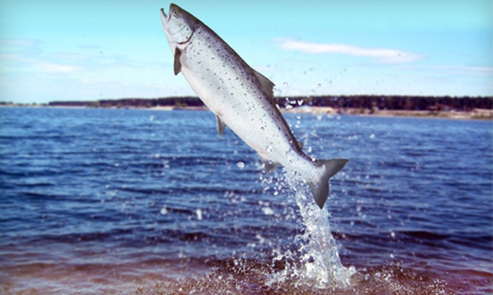 Captain Hook's Charter Fishing - Captain Hook's Charter Fishing: Salmon Fishing for One, Two, or Six from Captain Hook's Charter Fishing in St. Joseph (Up to 53% Off)