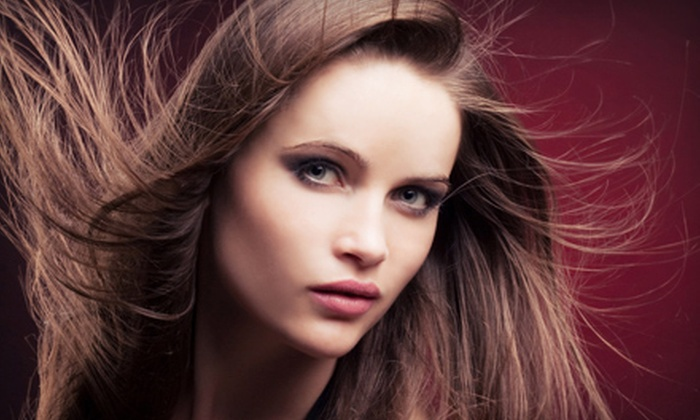 Blo Salon - Spring Valley: Haircut and Conditioning with Options for All-Over Color or Partial or Full Highlights at Blo Salon (Up to 72% Off)