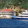 Up to Half Off Boat Trip to Catalina Island
