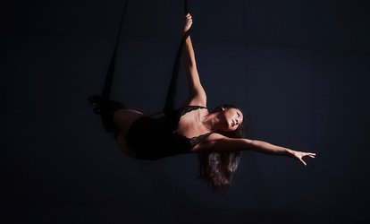 Silks and Trapeze Class for One or Two, Four Kids' Classes, or Party at Dragonfly Aerial Arts Studio (55% Off)