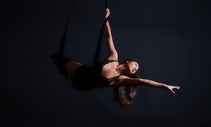 Dragonfly Aerial Arts Studio: Silks and Trapeze Class for One or Two, Four Kids' Classes, or Party at Dragonfly Aerial Arts Studio (50% Off)