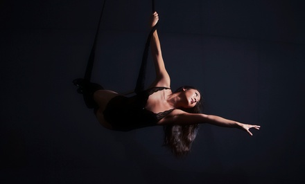Silks and Trapeze Class for One or Two, Four Kids' Classes, or Party at Dragonfly Aerial Arts Studio (50% Off)