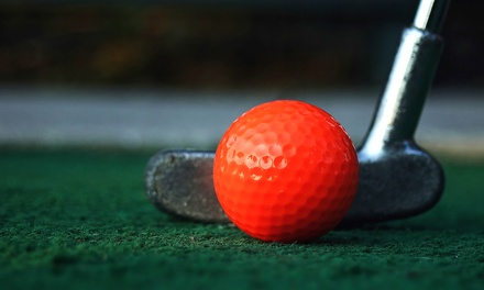 Mini Golf for 2 or 4, Unlimited Driving Range, or Birthday Party for 10 at Tee It Up Golf (Up to 47% Off)