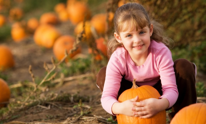 Chester's Pumpkin Patch & 3 Acre Corn Mystery Maze - Chester's Party Barn & Farm: Admission for Two, Four, or Six to Chester's Pumpkin Patch & 3 Acre Corn Mystery Maze (Up to 45% Off)