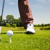 45% Off Private Golf Lesson