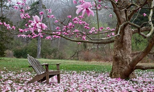 Tyler Arboretum: Tyler Arboretum Visit for a Family of Five or Two Adults (Up to 49% Off)