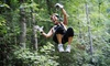Up to 47% Off Ocoee or Chattooga Zipline Tour with Wildwater