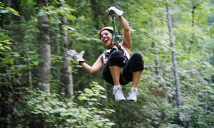 Wildwater: Ocoee River Basin Canopy Tour for One or Two from Wildwater (42% Off)