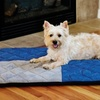 Quilted Memory-Foam Luxury Pet Bed