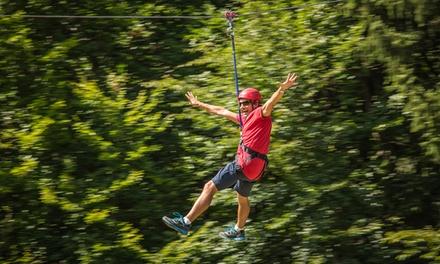 Ingresso giornaliero per adulti e bambini con albering e volo dellangelo al parco Family Adventure (sconto fino a 39%)