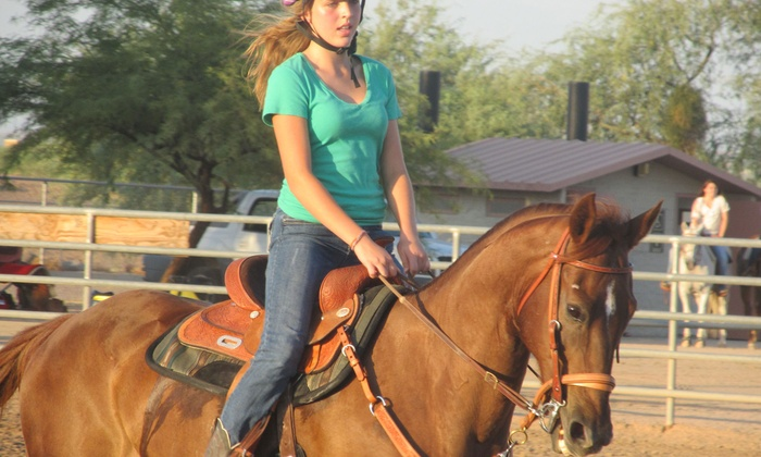 S.T.A.R.S. of Horsemanship - Palomino Acres: One or Two 60-Minute Group Horseback-Riding Lessons at S.T.A.R.S. of Horsemanship (Up to 56% Off)