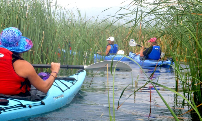 1000 Islands Kayaking - Gananoque: Full-Day Kayak Rentals for Two or Four from 1000 Islands Kayaking (Up to 52% Off)
