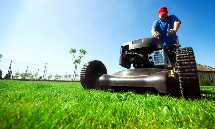 Focus Lawn Care, Inc - Atlanta: Month of Lawn Maintenance with Option for Fertilizer Treatment at Focus Lawn Care, Inc (Up to 52% Off)