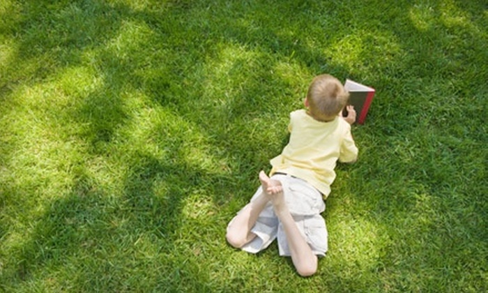 Lawn Doctor - Saint Charles: $19 for a Lawn Fertilization and Weed Treatment from Lawn Doctor ($49 Value)