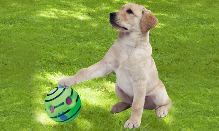 Wiggle Giggle Dog Toy Wow Blog