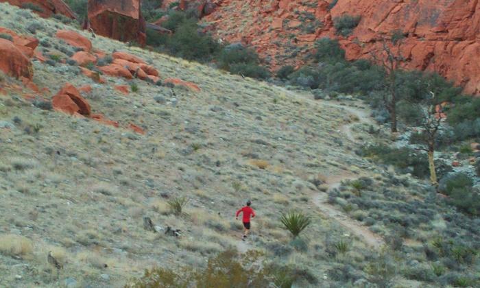 Las Vegas Running Tours - Las Vegas: Las Vegas Strip Running/Walking Tour for Two, Four, or Eight fromLas Vegas Running Tours (Up to 59% Off)
