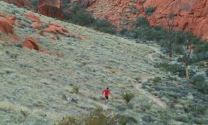 Las Vegas Running Tours: Las Vegas Strip Running/Walking Tour for Two, Four, or Eight fromLas Vegas Running Tours (Up to 59% Off)
