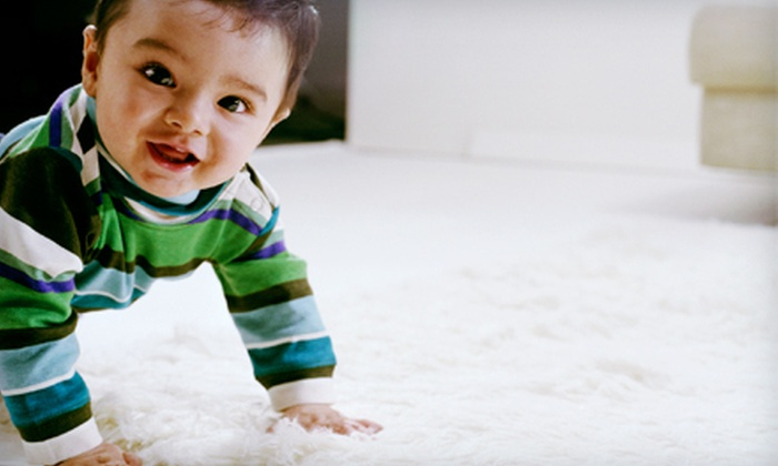 Steam Solutions - Ogden: Carpet Cleaning for Up to 1,200 or 2,500 Square Feet from Steam Solutions (Up to 60% Off)