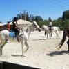 Up to 49% Off Horseback-Riding Instruction or Kids Camp
