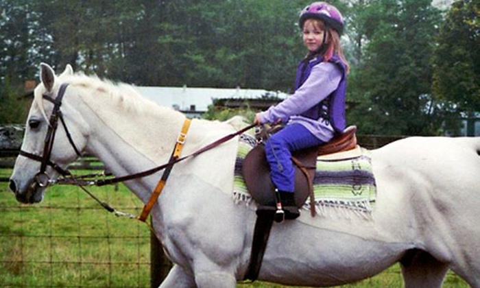 Dip 'N Run Stables - Aldergrove: Two or Four Private One-Hour Horse-Riding Lessons at Dip 'N Run Stables (Up to 59% Off)