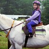 Up to 59% Off Horse-Riding Lessons
