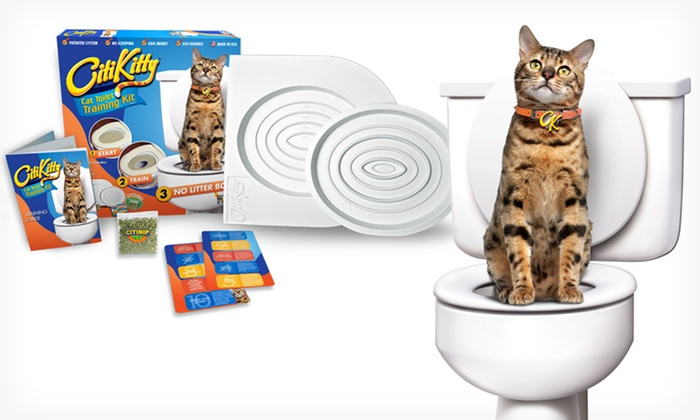 CitiKitty Cat Toilet-Training System: $14.99 for a CitiKitty Cat Toilet-Training System ($29.99 List Price). Free Returns.
