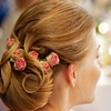 55% Off a Haircut, Shampoo, Style, and Updo