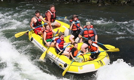 Half-Day Rafting Trip for One, Two, or Four from Natural High Rafting (Up to 51% Off)