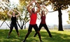 Fit Figure Fitness - Fit Figure Fitness: $264 for $480 Worth of Weight-Loss Program — Fit Figure Fitness