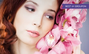 Chicago Institute of Plastic Surgery: $349 for One 1.5cc Syringe of Radiesse at Chicago Institute of Plastic Surgery ($750 Value)
