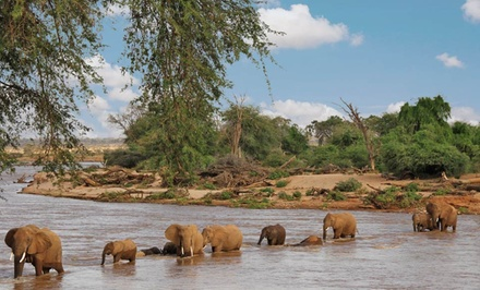 9-Day Kenyan Safari with Round-Trip Airfare and Meals from Odyssey Safaris. Price/Person Based on Double Occupancy.