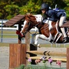Up to 75% Off Horseback Lessons or Party