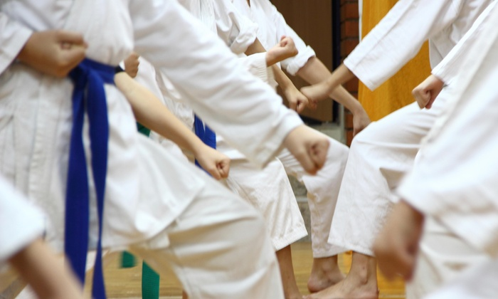 Justins School Of Brazilian Jiu Jitsu And Gymnastics - Sandy: $21 for $59 Worth of Martial-Arts Lessons — justins school of brazilian jiu jitsu and gymnastics