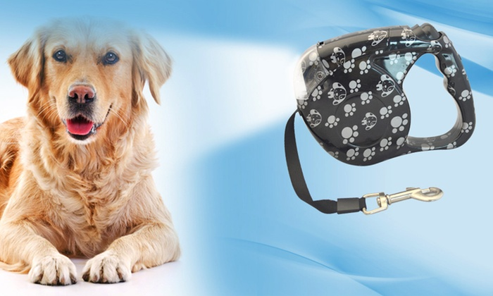 Retractable Dog Leash with Light: Retractable Dog Leash with Light. Multiple Designs Available. Free Returns.