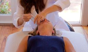 Santa Barbara Acupuncture Clinic: An Acupuncture Treatment at Santa Barbara Acupuncture Clinic (65% Off)