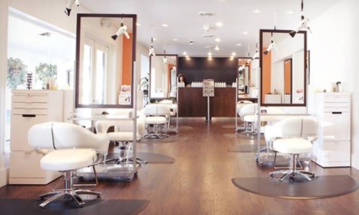 Salonamour, An Aveda Lifestyle Salonspa - Downtown Walnut Creek: Haircut with Aveda Botanical Therapy and Optional Highlights or Color-Balance Treatment at Salonamour (Up to 55% Off)