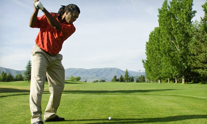 Sweet Swing Golf - Tucker: One, Three, or Five Group Golf Lessons from Pro Golfer with Video Swing Analysis at Sweet Swing Golf (Up to 66% Off)