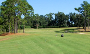 Cypress Lakes Golf Club: 18 Holes of Golf for Two or Four at Cypress Lakes Golf Club (Up to 58% Off)
