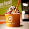 38% Off at Orange Leaf Frozen Yogurt