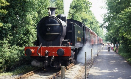 Avon Valley Rail, Day Rover Tickets, 10 - 18 February, Bristol (Up to 51% Off)