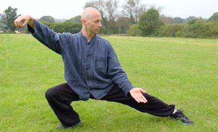 Three Months of Weekly Tai Chi or Ba Gua Zhang Classes at Gravity & Grace (80% Off)
