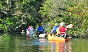 Motorized Kayak Adventures: $75 for a Motorized Kayak Tour for Two from Motorized Kayak Adventures ($120 Value)