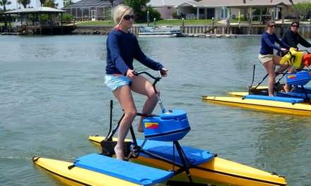 2hr Rental of One Tandem Hydrobike or Two Single Hydrobikes for 2 at Paddleboard New Smyrna Beach (Up to 72% Off)