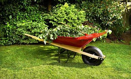 1 Acre of Lawn Maintenance (a $100 value) - Backyard Depot in