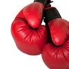 Up to 70% Off Muay Thai for Adults or Kids