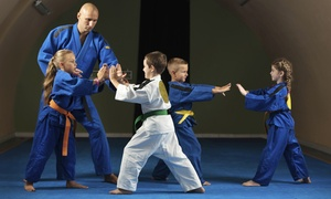 Martinez Martial Arts and Family Fitness Center: $125 for a Private Party for Up to 12 Kids at Martinez Martial Arts and Family Fitness Center ($250 Value)